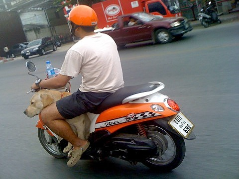Тайкаст №8: здоровье в Таиланде