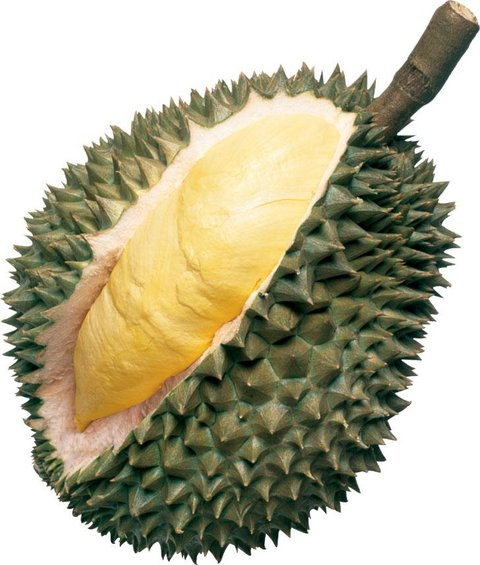 http://thaisuay.net/files/durian.jpg