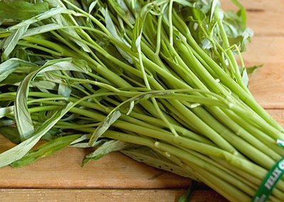 Дикие травы, овощи и прочие растительные съедобности